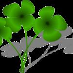 「運が良かっただけ」を英語で何という? – 謙遜の表現
