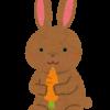 「ウサギ」を英語で何と言う? – rabbitとhareの違いとは