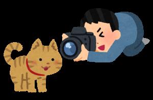 ビデオ撮影をしている画像