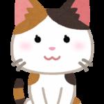 「野良猫」を英語で何と言う?