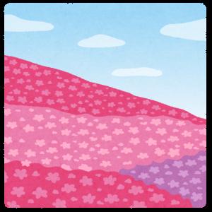 桜で覆われている画像