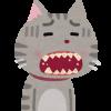 「歯周病」を英語で何と言う? – periodontalは医学専門用語