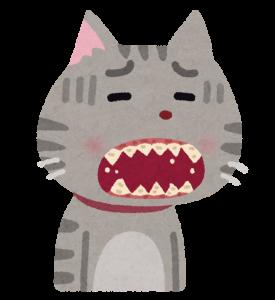 歯周病になった猫の画像