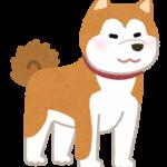 「犬」についての英語をマスターしよう! – dogだけではない