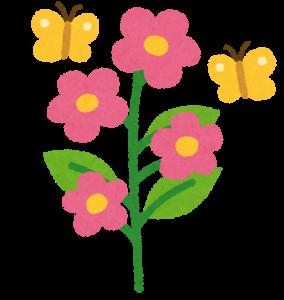 満開の花の画像