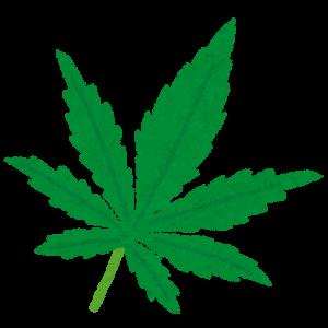 大麻の葉っぱ